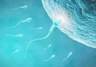 西安不孕不育�t院解析男性